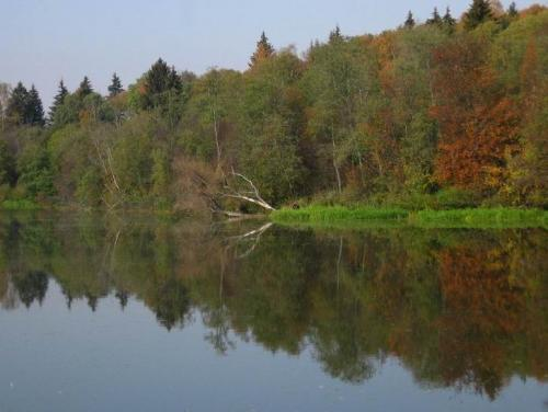 Осень в объективе